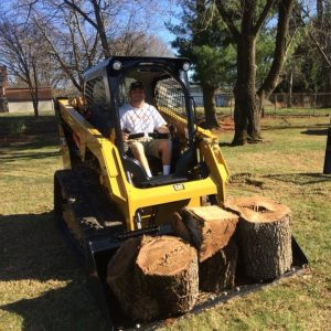 Johnson City Tree Removal & Service